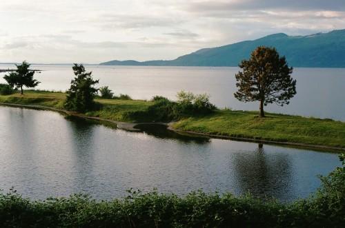 samish island high tide